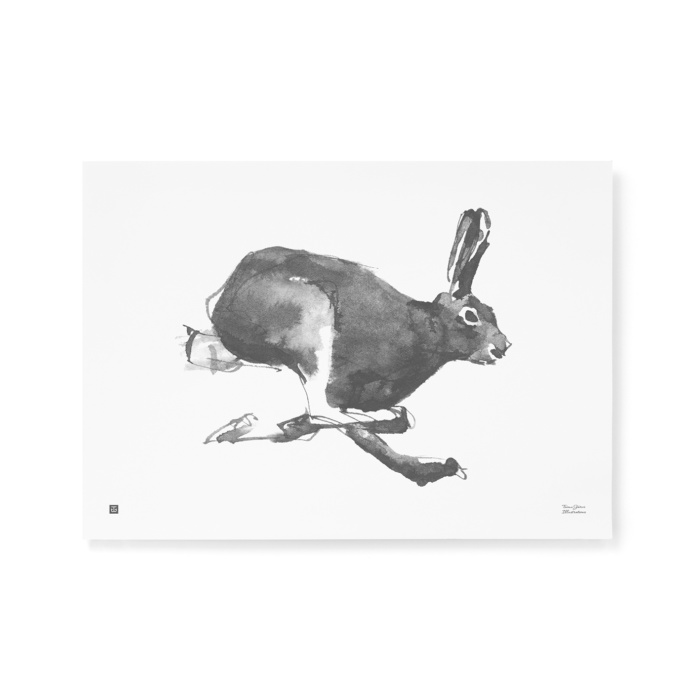 Black & white Hare art print