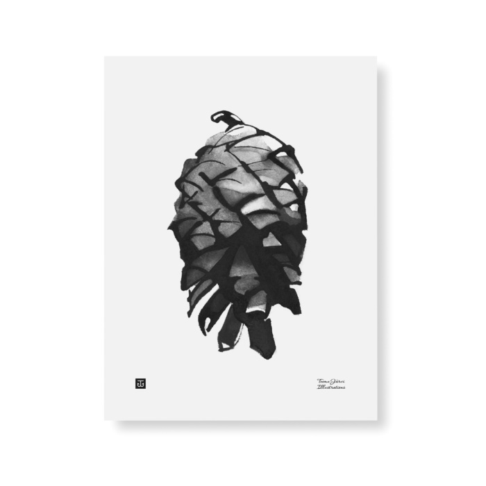 Black & white pine cone art print