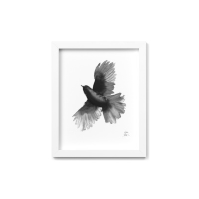siberian jay framed wall art