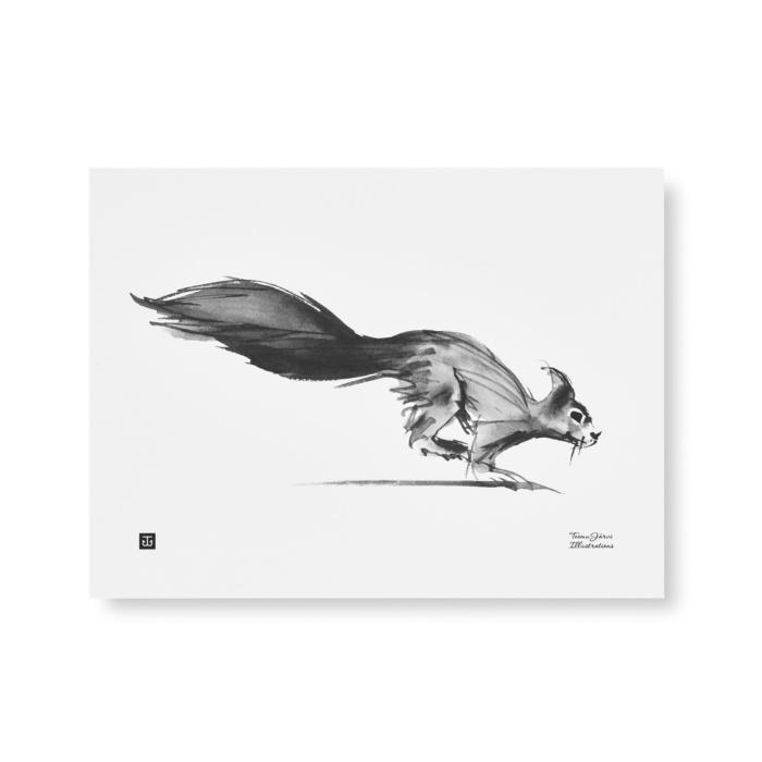squirrel art print poster by teemu jarvi