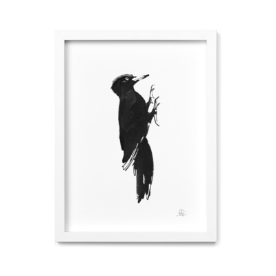 woodpecker art print by teemu jarvi