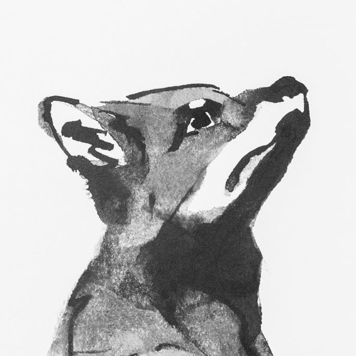 fox art print poster