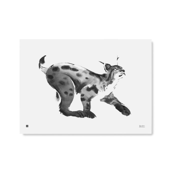 lynx art print poster by teemu jarvi