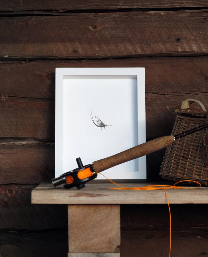 mayfly fine art print by teemu jarvi