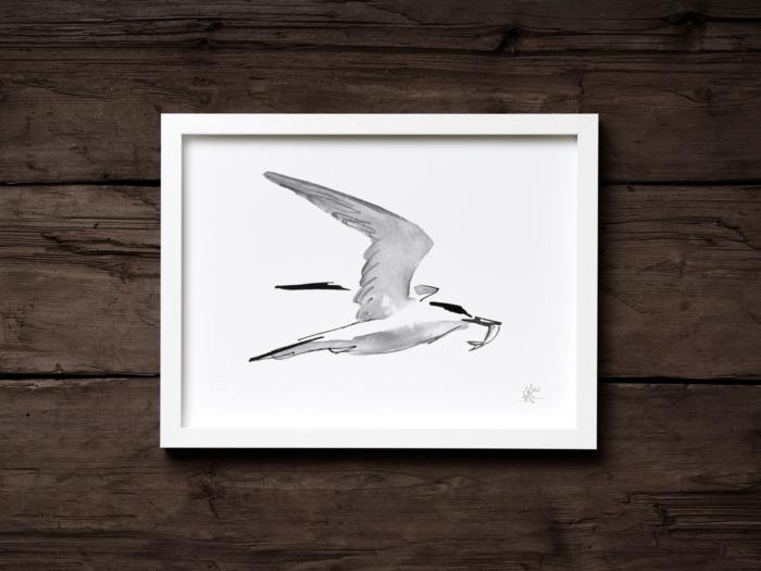 tern fine art print by teemu jarvi
