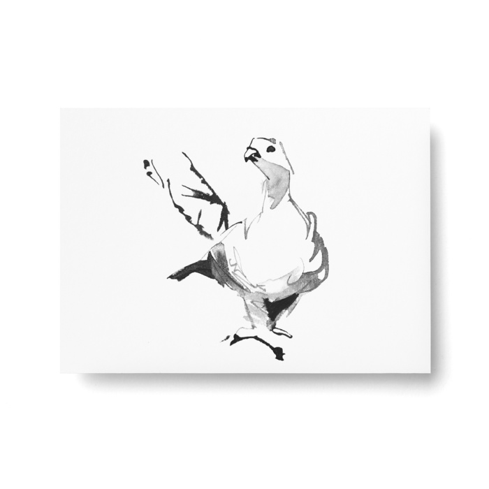 grouse postcard art print by teemu jarvi