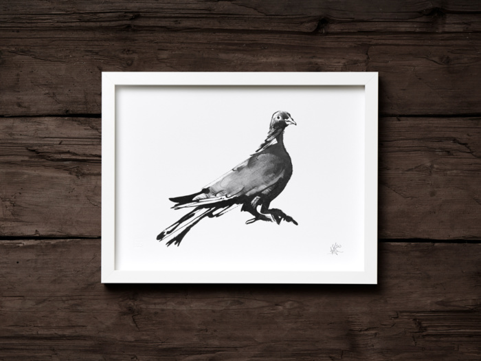 wood pigeon art print by teemu jarvi