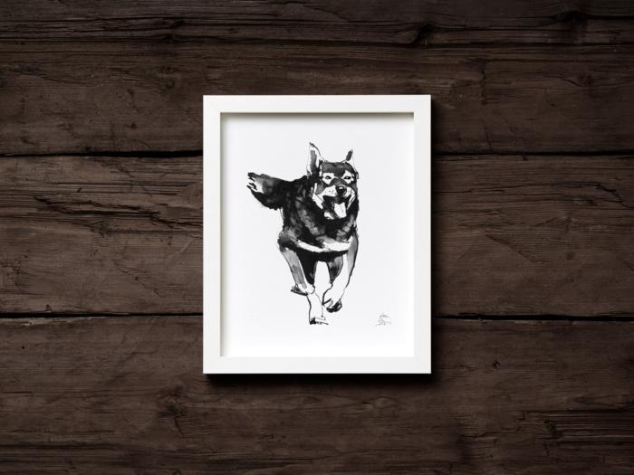 Elkhounddog fine art print