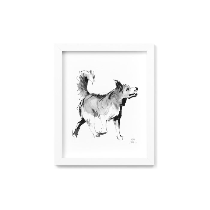 Spitz dog framed wall art