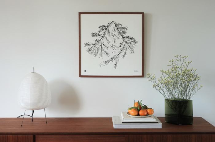 Spruce Branch framed print
