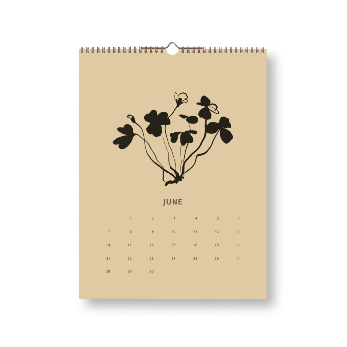 Black & Sand Fox tales calendar 2021 june