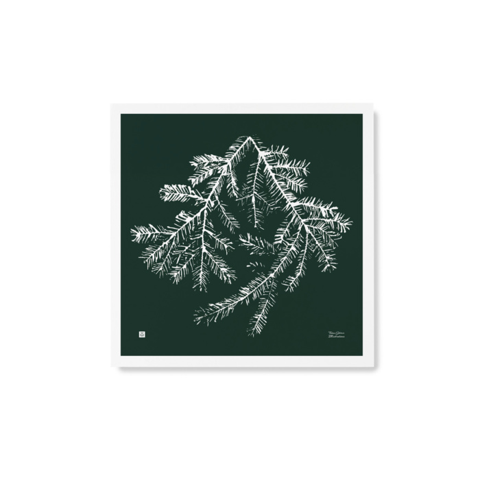 Forest green square Spruce Branch poster