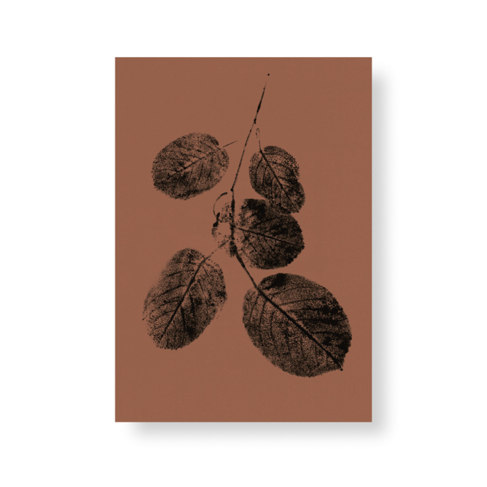 Autumn colored goat willow branch mini poster
