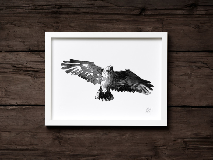 Buzzard framed wall art