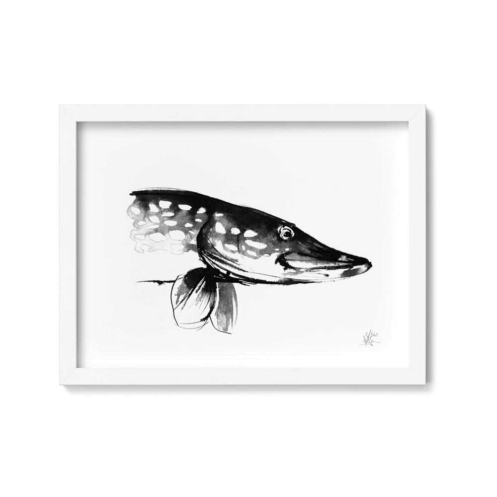 Pike art print