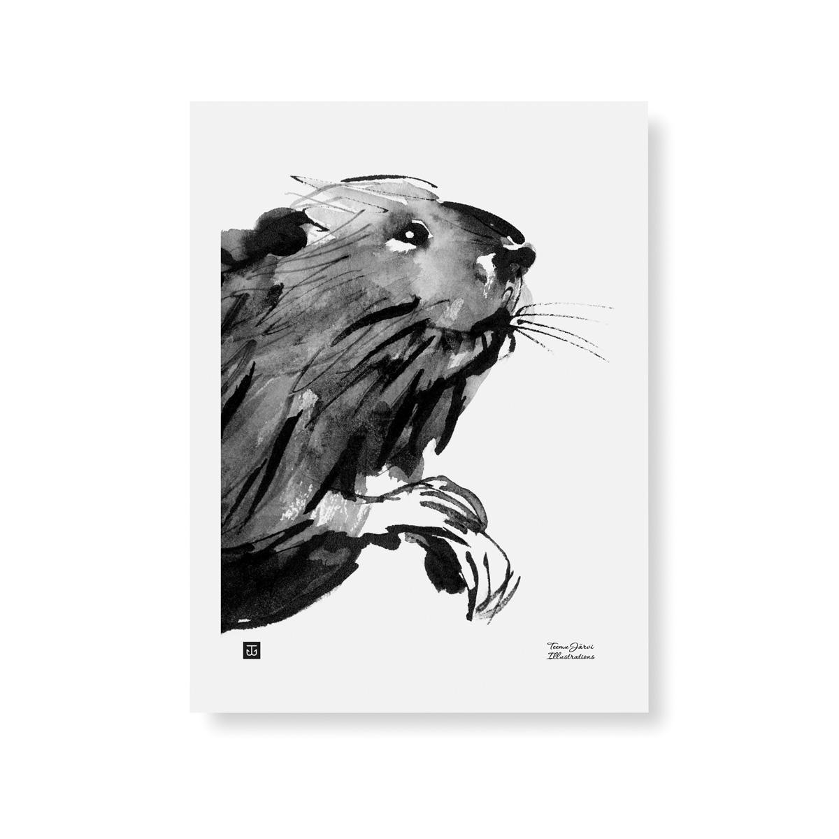 Curious beaver poster